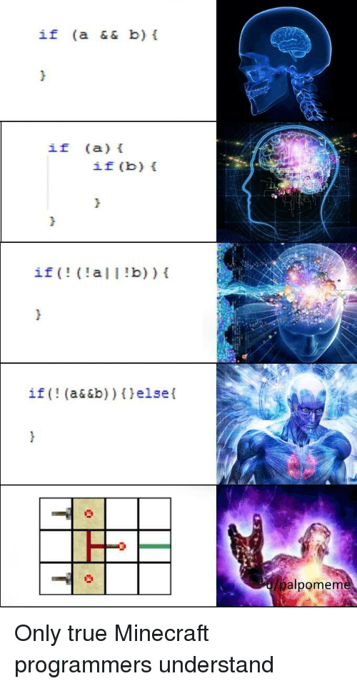 Minecraft, True, and  Understand: if (a && b)  if (a)  if (b) t  if  (a| I !b))  if (! (a&&b)) (elsel  palpomenm Only true Minecraft programmers understand
