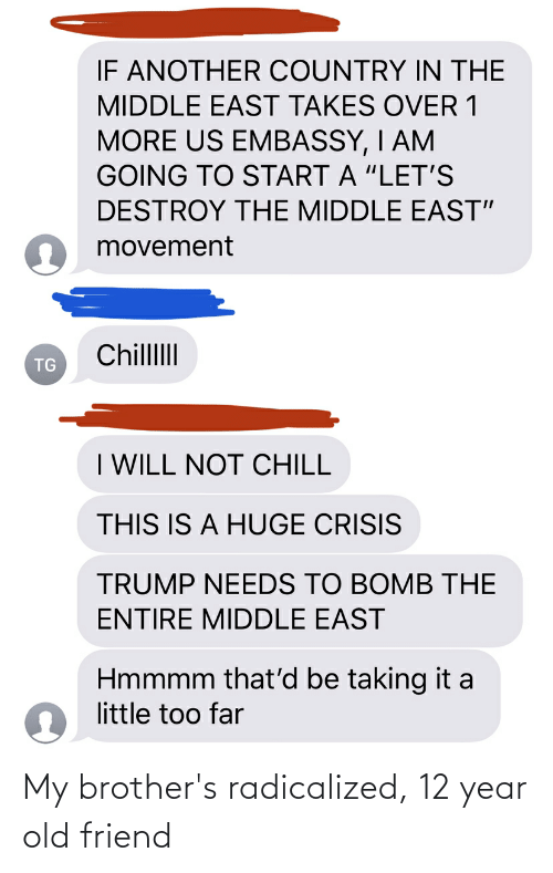 """radicalized: IF ANOTHER COUNTRY IN THE  MIDDLE EAST TAKES OVER 1  MORE US EMBASSY, I AM  GOING TO START A """"LET'S  DESTROY THE MIDDLE EAST""""  O movement  ChillII  TG  I WILL NOT CHILL  THIS IS A HUGE CRISIS  TRUMP NEEDS TO BOMB THE  ENTIRE MIDDLE EAST  Hmmmm that'd be taking it a  little too far My brother's radicalized, 12 year old friend"""