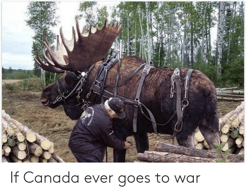 Canada, War, and Ever: If Canada ever goes to war