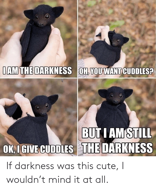 cute: If darkness was this cute, I wouldn't mind it at all.