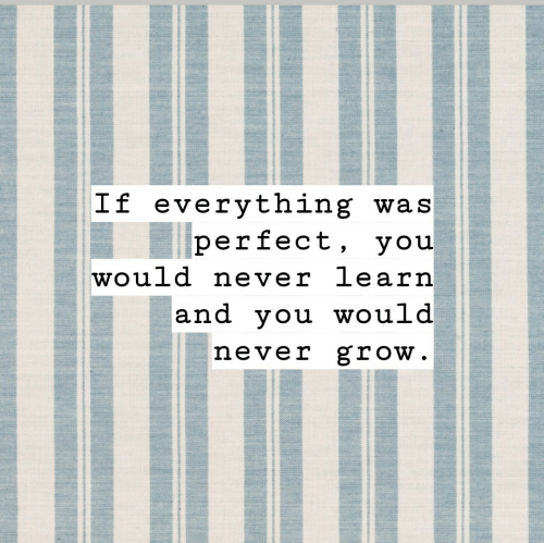 Never Grow: If everything was  perfect, you  would never learn  and you would  never grow.