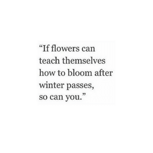 """Winter, Flowers, and How To: """"If flowers can  teach themselves  how to bloom after  winter passes,  so can you.  05"""