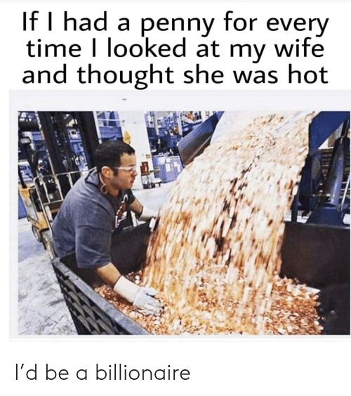Time, Wife, and Thought: If I had a penny for every  time I looked at my wife  and thought she was hot I'd be a billionaire