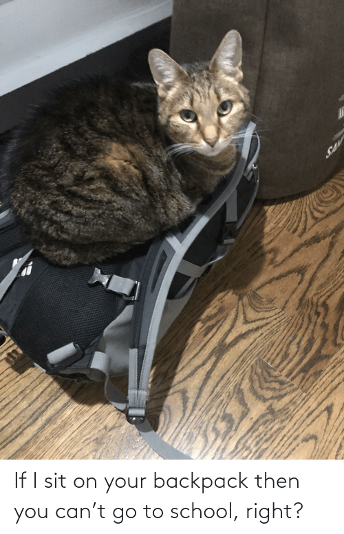 go to school: If I sit on your backpack then you can't go to school, right?