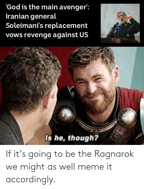 accordingly: If it's going to be the Ragnarok we might as well meme it accordingly.