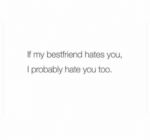 bestfriend: If my bestfriend hates you,  I probably hate you too.