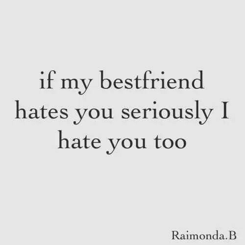 bestfriend: if my bestfriend  hates you seriously I  hate vou too  Raimonda.B