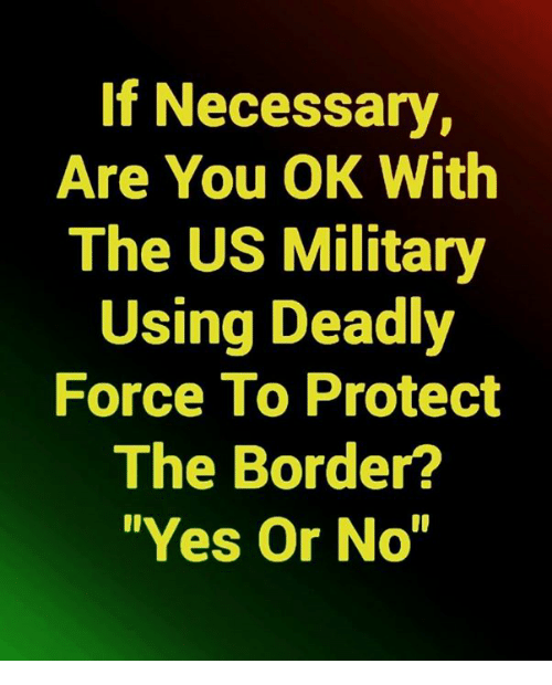 """are you ok: If Necessary,  Are You OK With  The US Military  Using Deadly  Force To Protect  The Border?  """"Yes Or No"""""""