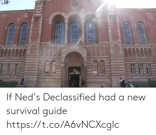 guide: If Ned's Declassified had a new survival guide https://t.co/A6vNCXcglc