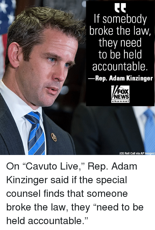 """Memes, News, and Fox News: If somebody  broke the law,  they need  to be helo  accountable.  Rep. Adam Kinzinger  FOX  NEWS  cha n ne I  (CQ Roll Call via AP Images) On """"Cavuto Live,"""" Rep. Adam Kinzinger said if the special counsel finds that someone broke the law, they """"need to be held accountable."""""""