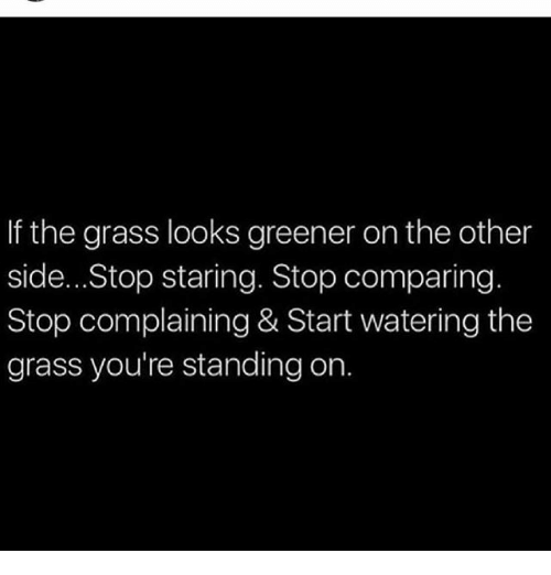 Grasse: If the grass looks greener on the other  side...Stop staring. Stop comparing  Stop complaining & Start watering the  grass you're standing on.