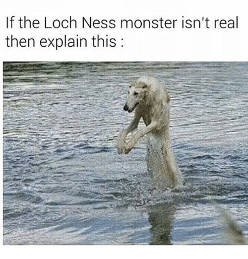 The Loch: If the Loch Ness monster isn't real  then explain this: