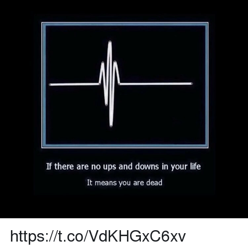 Life, Memes, and Ups: If there are no ups and downs in your life  It means you are dead https://t.co/VdKHGxC6xv