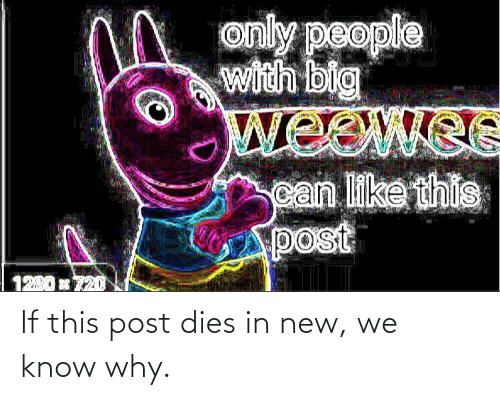 Why, New, and Post: If this post dies in new, we know why.