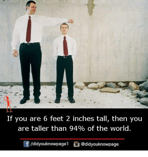 Memes, World, and 🤖: If you are 6 feet 2 inches tall, then you  are taller than 94% of the world.  f/didyouknowpagel@didyouknowpage