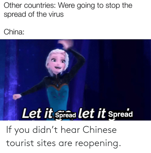 Tourist: If you didn't hear Chinese tourist sites are reopening.