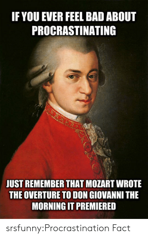 Bad, Tumblr, and Blog: IF YOU EVER FEEL BAD ABOUT  PROCRASTINATING  JUST REMEMBER THAT MOZART WROTE  THE OVERTURE TO DON GIOVANNI THE  MORNING IT PREMIERED srsfunny:Procrastination Fact