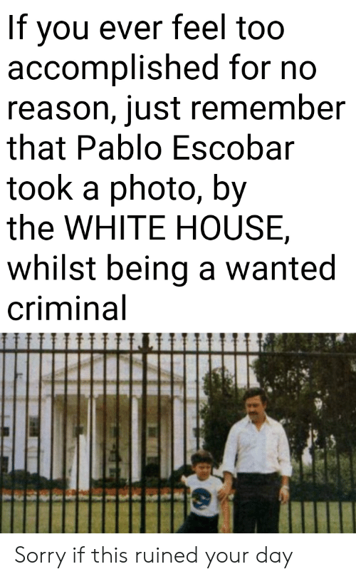no reason: If you ever feel too  accomplished for no  reason, just remember  that Pablo Escobar  took a photo, by  the WHITE HOUSE  whilst being a wanted  criminal Sorry if this ruined your day