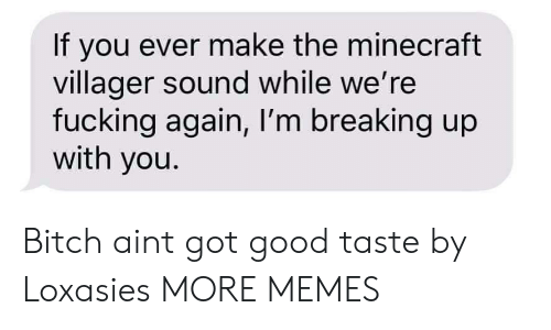 Bitch, Dank, and Fucking: If you ever make the minecraft  villager sound while we're  fucking again, I'm breaking up  with you. Bitch aint got good taste by Loxasies MORE MEMES