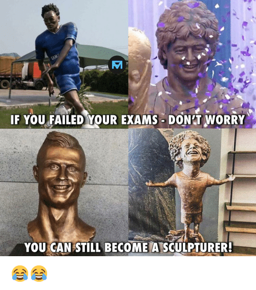 Memes, 🤖, and Can: IF YOU FAILED YOUR EXAMS DON'T WORRY  YOU CAN STILL BECOME A SCULPTURER 😂😂