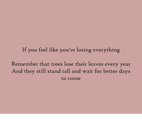 Better Days: If you feel like you're losing everything  Remember that trees lose their leaves every year  And they still stand tall and wait for better days  to cone