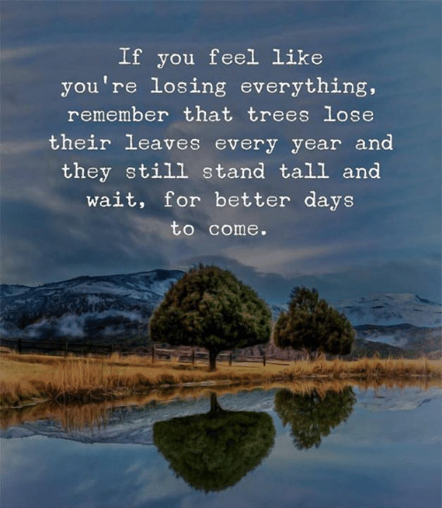 Better Days: If you feel Like  you're losing everything,  remember that trees lose  their leaves every year and  they still stand tall and  wait, for better days  to come.