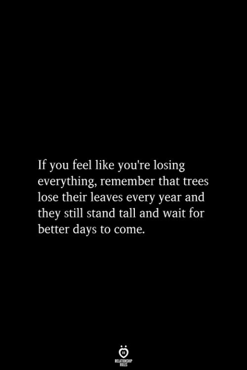 Better Days: If you feel like you're losing  everything, remember that trees  lose their leaves every year and  they still stand tall and wait for  better days to come.  RELATIONSHIP  ES