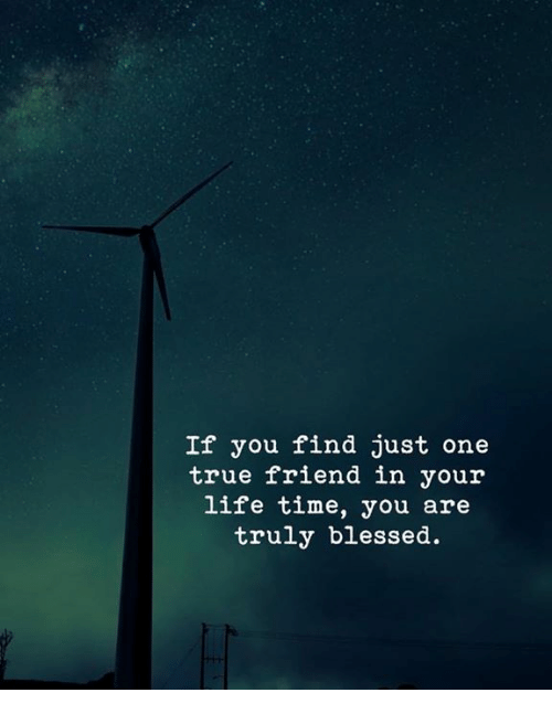 Blessed, Life, and True: If you find just one  true friend in your  life time, you are  truly blessed.