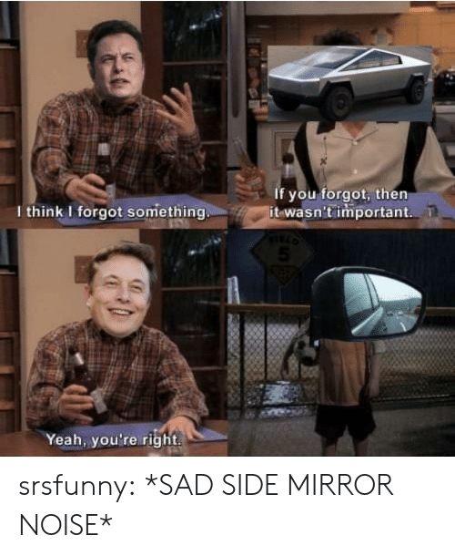 Mirror: If you forgot, then  it wasn't important  I think I forgot something.  Yeah, you're right srsfunny:  *SAD SIDE MIRROR NOISE*