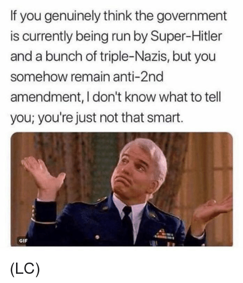 Gif, Memes, and Run: If you genuinely think the government  is currently being run by Super-Hitler  and a bunch of triple-Nazis, but you  somehow remain anti-2nd  amendment, I don't know what to tell  you; you're just not that smart.  GIF (LC)