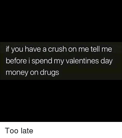 Crush, Drugs, and Money: if you have a crush on me tell me  before i spend my valentines day  money on drugs Too late