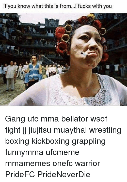 Boxing, Memes, and Ufc: if you know what this is from...i fucks with you Gang ufc mma bellator wsof fight jj jiujitsu muaythai wrestling boxing kickboxing grappling funnymma ufcmeme mmamemes onefc warrior PrideFC PrideNeverDie