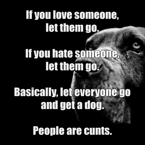 Love, Memes, and 🤖: If you love someone,  let them go  If you hate someone  let them go  Basically, let everyone go  and get a doğ.  People are cunts.