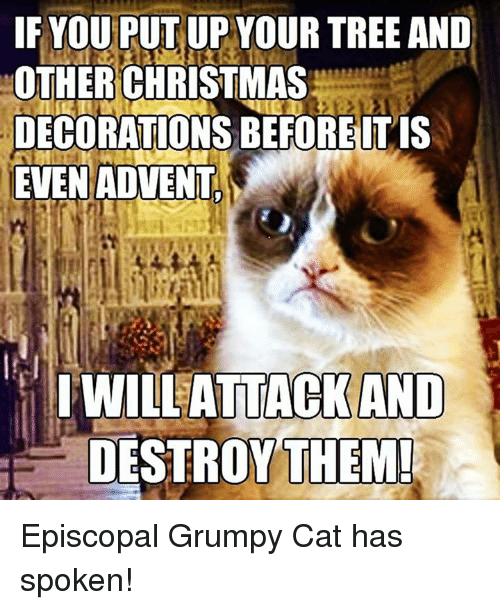 Grumpy Cats: IF YOU PUT UP YOUR TREE AND  OTHER CHRISTMAS  DECORATIONS BE FORE IT IS  EVEN ADVENT  I WILL ATTACK AND  DESTROY THEM! Episcopal Grumpy Cat has spoken!