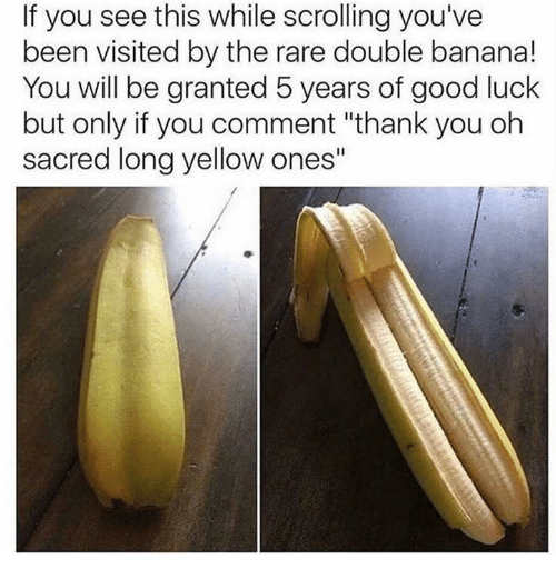 "Thank You, Banana, and Good: If you see this while scrolling you've  been visited by the rare double banana!  You will be granted 5 years of good luck  but only if you comment ""thank you oh  sacred long yellow ones"""