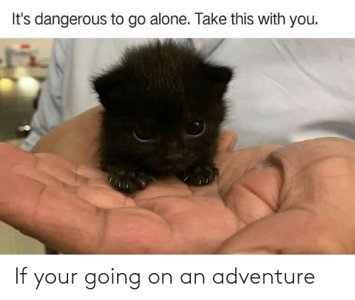 If Your: If your going on an adventure