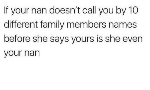 Family, She, and Names: If your nan doesn't call you by 10  different family members names  before she says yours is she even  your nan