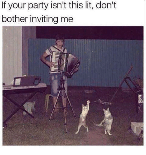 Botherers: If your party isn't this lit, don't  bother inviting me