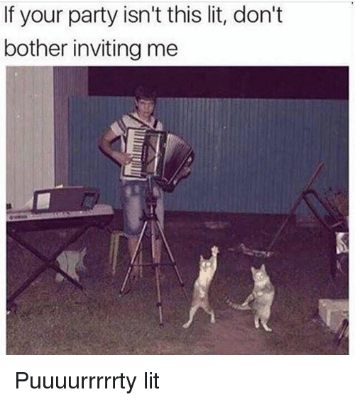 Botherers: If your party isn't this lit, don't  bother inviting me Puuuurrrrrty lit