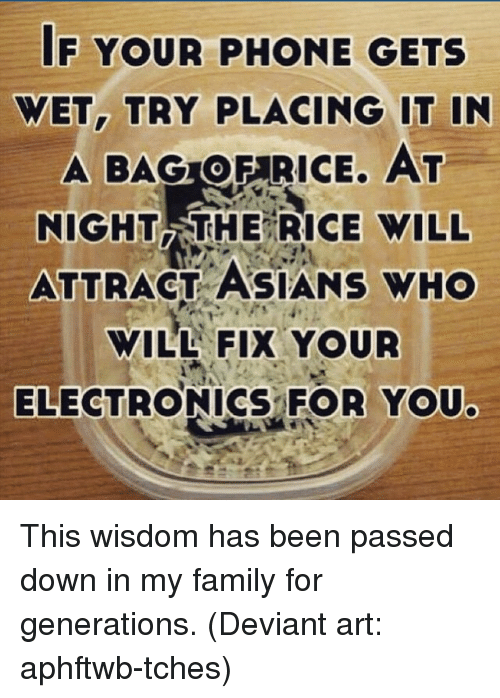 Deviant Arts: IF YOUR PHONE GETS  WET, TRY PLACING IT IN  A BAGroEARICE. AT  NIGHT THE RICE WILL  ATTRACT ASIANS WHO  WILL FIX YOUR  ELECTRONICS FOR YOU. This wisdom has been passed down in my family for generations. (Deviant art: aphftwb-tches)