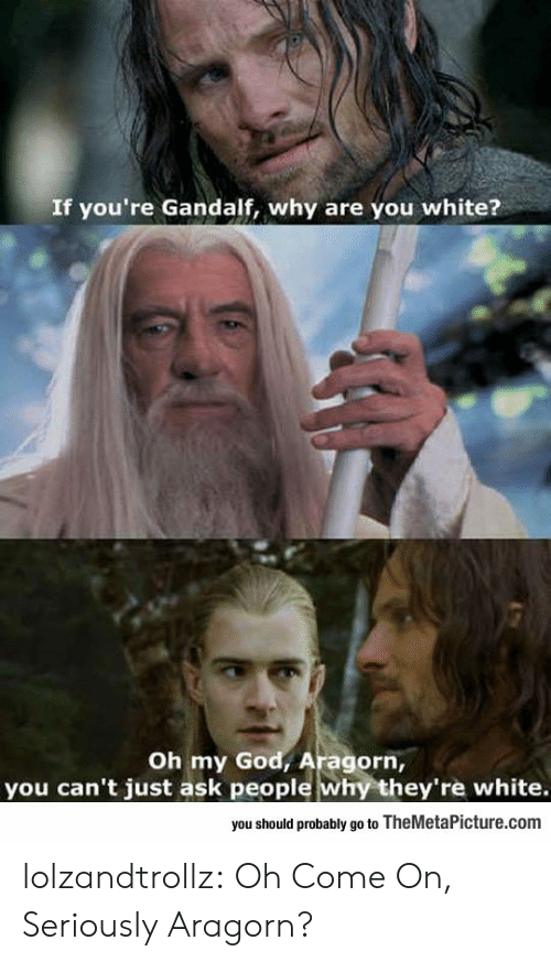 Aragorn: If you're Gandalf, why are you white?  Oh my God, Aragorn,  you can't just ask people why they're white.  you should probably go to TheMetaPicture.com lolzandtrollz:  Oh Come On, Seriously Aragorn?