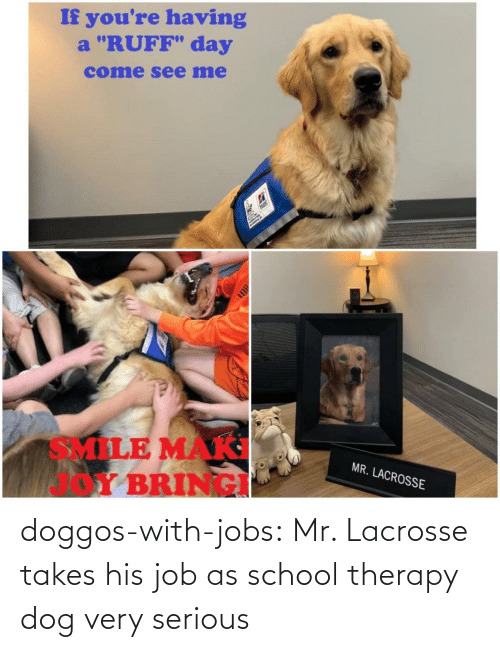 "School, Tumblr, and Blog: If you're having  a ""RUFF"" day  come see me  Hils  SMILE MAK  Y BRINGI  MR. LACROSSE doggos-with-jobs:  Mr. Lacrosse takes his job as school therapy dog very serious"