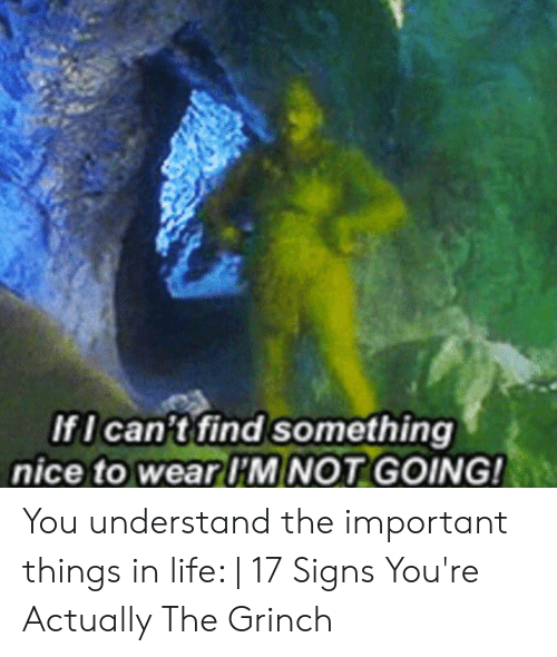 The Grinch, Life, and Nice: IfI can't find something  nice to wear I'M NOT GOING! You understand the important things in life: | 17 Signs You're Actually The Grinch