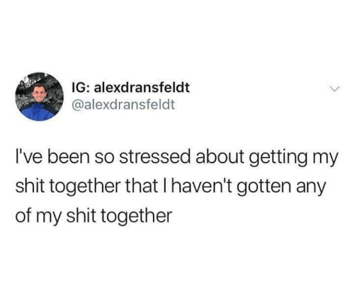 Shit Together: IG: alexdransfeldt  @alexdransfeldt  I've been so stressed about getting my  shit together that I haven't gotten any  of my shit together