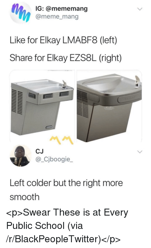 mang: IG: @mememang  @meme_mang  Like for Elkay LMABF8 (left)  Share for Elkay EZS8L (right)  CJ  @_Cjboogie_  Left colder but the right more  smooth <p>Swear These is at Every Public School (via /r/BlackPeopleTwitter)</p>