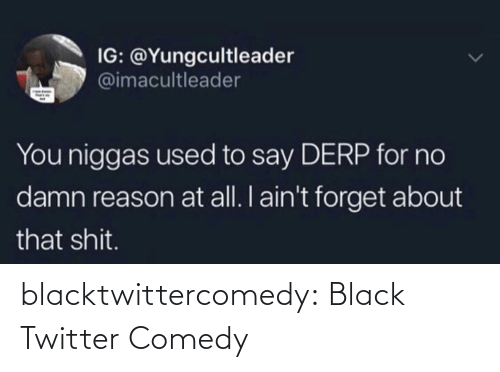 aint: IG: @Yungcultleader  @imacultleader  You niggas used to say DERP for no  damn reason at all. I ain't forget about  that shit. blacktwittercomedy:  Black Twitter Comedy