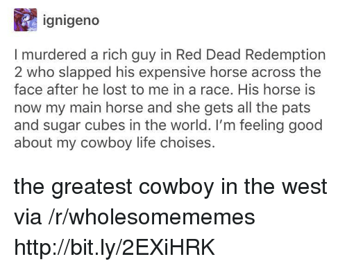 Life, Lost, and Good: ignigeno  I murdered a rich guy in Red Dead Redemption  2 who slapped his expensive horse across the  face after he lost to me in a race. His horse is  now my main horse and she gets all the pats  and sugar cubes in the world. I'm feeling good  about my cowboy life choises. the greatest cowboy in the west via /r/wholesomememes http://bit.ly/2EXiHRK