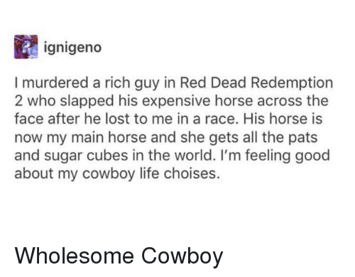 Life, Lost, and Good: ignigeno  I murdered a rich guy in Red Dead Redemption  2 who slapped his expensive horse across the  face after he lost to me in a race. His horse is  now my main horse and she gets all the pats  and sugar cubes in the world. I'm feeling good  about my cowboy life choises.