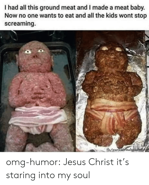 Jesus, Omg, and Tumblr: Ihad all this ground meat and I made a meat baby.  Now no one wants to eat and all the kids wont stop  screaming.  fb/paranormaloadp omg-humor:  Jesus Christ it's staring into my soul