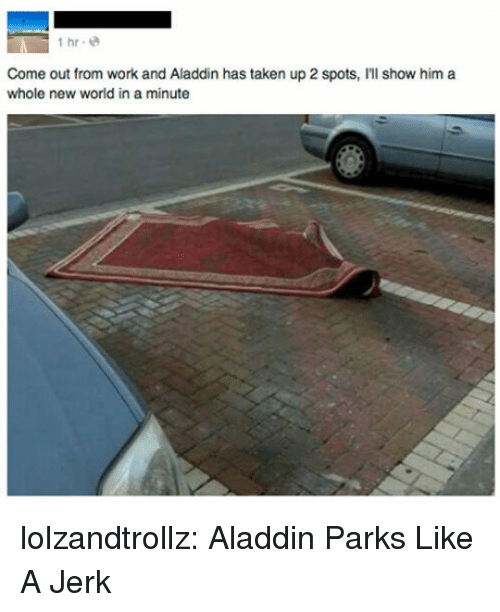 new world: İhr.@  Come out from work and Aladdin has taken up 2 spots, I'll show him a  whole new world in a minute lolzandtrollz:  Aladdin Parks Like A Jerk
